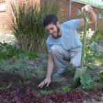 HOPE-Cape-Town-Distributes-Trees-for-Arbour-Week8.jpg